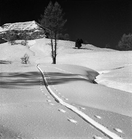 COL DE VARS - TRACES DU SKIEUR SOLITAIRE SOUS L'EYSSINA - retirage photo Machatschek (ca 1953)